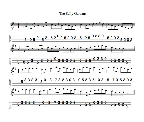 Mandolin u00bb Mandolin Tabs Irish Washerwoman - Music Sheets, Tablature, Chords and Lyrics